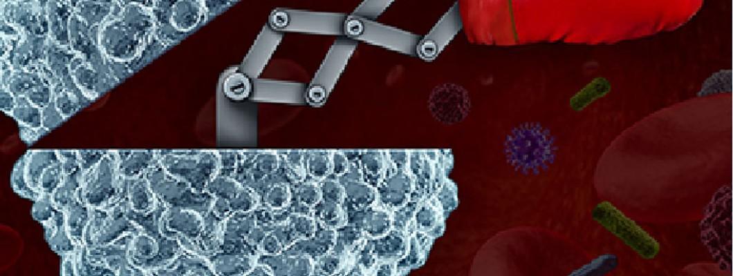 自身免疫力才是最好的抗癌良藥~四大原則