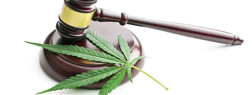 台灣醫療用大麻應該合法化?